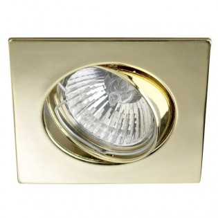 Kit Recessed light ECLO Gold (steerable)