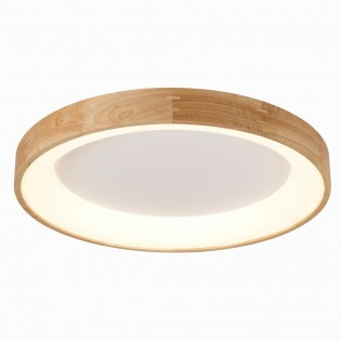 LED Ceiling FLush Light Drevo