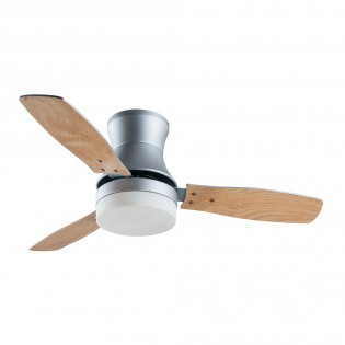 Ceiling Fan with Light Buran