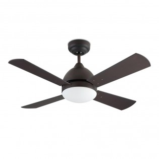 Ceiling Fan with light Borneo