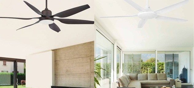 Ceiling fans new season 2019